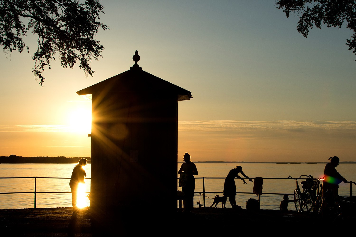 Active people as silhouettes by the water at sunset. - stor (580976)